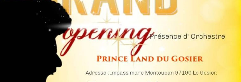 Prince-Land